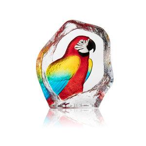 Wildlife Papegoja