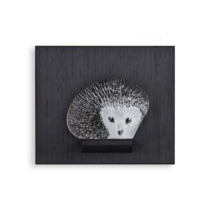 Wildlife Hedgehog
