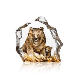 Wildlife Brown Bear