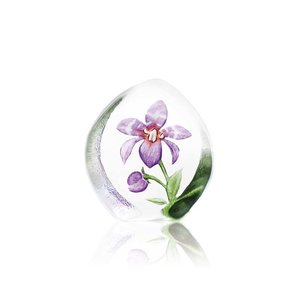 Floral Fantasy Orkidé
