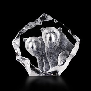 Wildlife Polar Bears