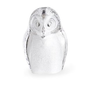 Safari Owl