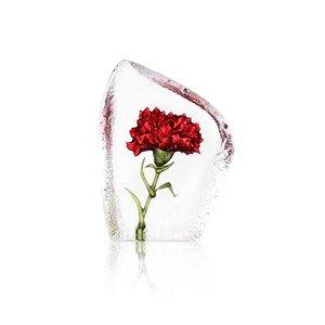 Floral Fantasy Carnation