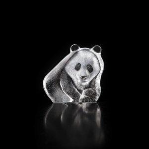 Wildlife Panda