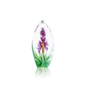 Floral Fantasy Orchid (miniature)