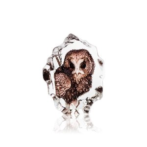 Wildlife Owl (miniature)