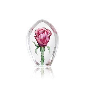 Floral Fantasy Rose (miniature)