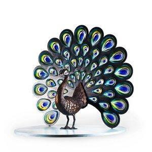 Peacock Ltd Ed